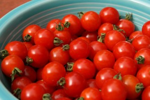 'Matt's Wild Cherry' tomatoes